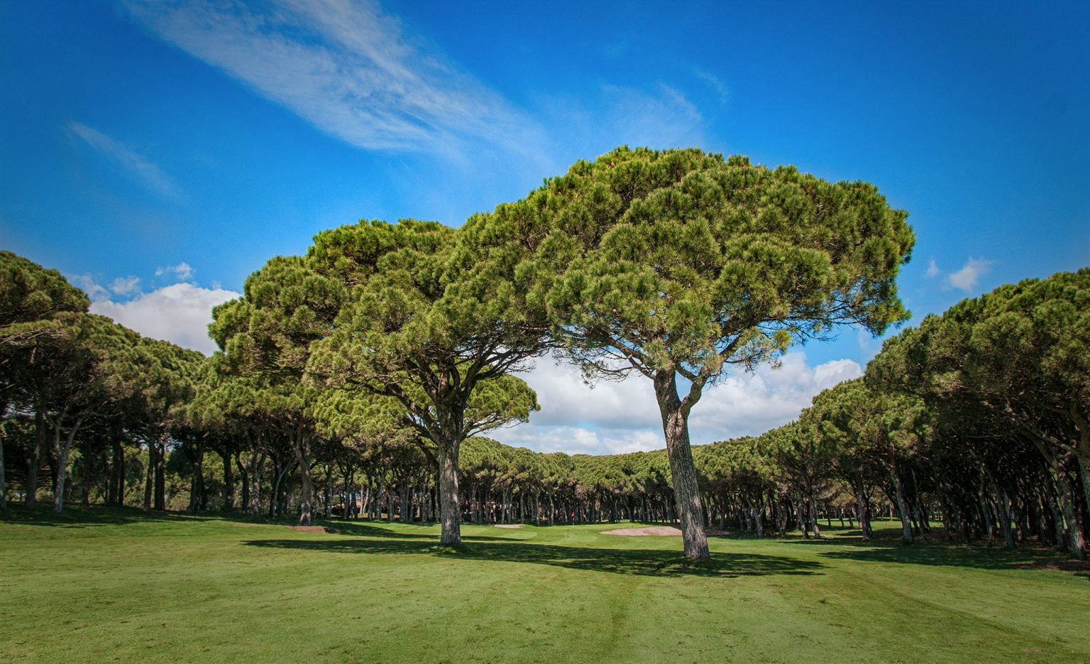 Platja de Pals Golf, Costa Brava, Spain